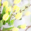 눈덮인 꽃